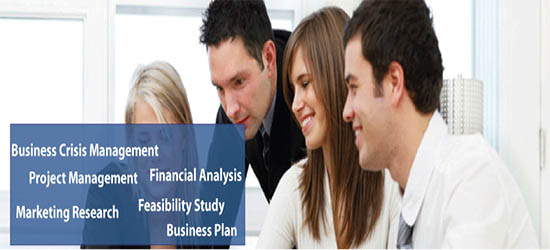 The Consultants Lebanon Feasibility Business Plan